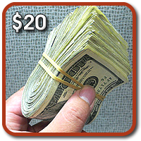 Express My Cash Freebies - $20 Per Referral! One Credit To